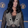 Cher  at the 62nd Annual DGA Awards - Press Room, Hyatt Regency Century Plaza Hotel, Century City, CA. 01-30-10 - Foto de Stock