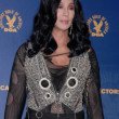 Cher  at the 62nd Annual DGA Awards - Press Room, Hyatt Regency Century Plaza Hotel, Century City, CA. 01-30-10 - Stock fotografie