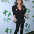 Stock Photo: Josie Marat 7th Annual Global Green USA's Pre-Oscar Party, Avalon, Hollywood, CA. 03-03-10