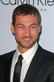Andy Whitfield — Stock Photo