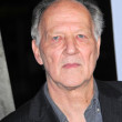 Werner Herzog — Stock Photo