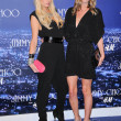 Постер, плакат: Paris Hilton and Nicky Hilton