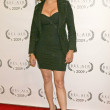 Kavita Patil  at the Opening Night of Bel Air Film Festival, UCLA James Bridges Theatre, Los Angeles, CA. 11-13-09 - Stock Photo