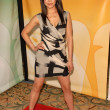 Aimee Garcia  at NBC Universals Press Tour Cocktail Party, Langham Hotel, Pasadena, CA. 01-10-10 - Stock Photo