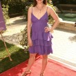Kellie Martin  at the March of Dimes Celebration of Babies, Four Seasons Hotel, Los Angeles, CA. 11-07-09 — Stock Photo