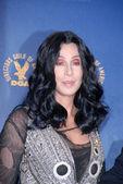 Cher at the 62nd Annual DGA Awards - Press Room, Hyatt Regency Century Plaza Hotel, Century City, CA. 01-30-10 — Стоковое фото