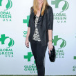 Judy Greer  at the 7th Annual Global Green USA&#039;s Pre-Oscar Party, Avalon, Hollywood, CA. 03-03-10 - Stock Photo