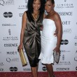 Stock Photo: Garcelle Beauvais-Nilon and TichinArnoldat 3rd Annual Essence Black Women in Hollywood Luncheon, Beverly Hills Hotel, Beverly Hills, CA. 03-04-10