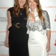 Stock Photo: Katherine Flynn and Jane Seymour at 4th Annual Los Angeles Galfor Christopher and DanReeve Foundation. Beverly Hilton, Beverly Hills, CA. 12-02-08
