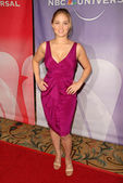 Erika Christensen at NBC Universal's Press Tour Cocktail Party, Langham Hotel, Pasadena, CA. 01-10-10 — Stockfoto