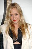 Chloe Sevigny — Fotografia Stock