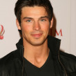 Постер, плакат: Adam Gregory at the 2009 Maxim 100 Party Barker Hanger Santa Monica CA 05 13 09