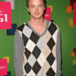Aaron Paul at T-Mobile G1 Launch Party. Siren Studios, Hollywood, CA. 10-17-08 — Stock Photo #15093449