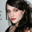Stock Photo: Kat Dennings at ELLE Magazines 15th Annual Women in Hollywood Event. Four Seasons Hotel, Beverly Hills, CA. 10-06-08