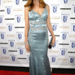 Stock Photo: Heather Graham at 17th Annual BAFTBritanniAwards. Hyatt Regency Century Plaza, Century City, CA. 11-06-08