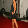Постер, плакат: Bai Ling at the 2009 Maxim 100 Party Barker Hanger Santa Monica CA 05 13 09