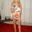 Постер, плакат: Katie Lohmann at the 2009 Maxim 100 Party Barker Hanger Santa Monica CA 05 13 09