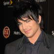 Adam Lambert  at the TV GUIDE Magazines Hot List Party, SLS Hotel, Los Angeles, CA. 11-10-09 - Stock Photo
