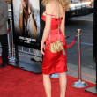 Heather Graham at the Los Angeles Premiere of 'The Hangover'. Grauman's Chinese Theatre, Hollywood, CA. 06-02-09 — 图库照片