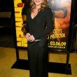 Abbie Cornish at the U.S. Premiere of Watchmen. Graumans Chinese Theatre, Hollywood, CA. 03-02-09 - Stok fotoraf