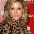 Julie Bowen  at the Us Weekly Hot Hollywood Style 2009 party, Voyeur, West Hollywood, CA. 11-18-09 - Stok fotoraf