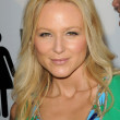 Jewel Kilcher at the Los Angeles Premiere of &#039;The Ugly Truth&#039;. Cinerama Dome, Hollywood, CA. 07-16-09 - Zdjcie stockowe