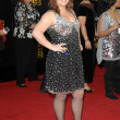 Kelly Clarkson  at the 2009 American Music Awards Arrivals, Nokia Theater, Los Angeles, CA. 11-22-09 - Stok fotoraf
