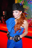 Phoebe price — Stockfoto