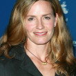 Elisabeth Shue — Stock Photo #15147321