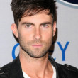 Adam Levine at the 2008 Breeders Cup Winners Circle Gala. Hollywood Palladium, Hollywood, CA. 10-23-08 — Stock Photo