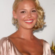 Katherine Heigl at the Hot In Hollywood Charity Event to benefit the AIDS Healthcare Foundation and Real Medicine. Avalon, Hollywood, CA. 08-16-08 — Stock Photo #15166737