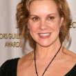 Elizabeth Perkins at the 13th Annual Art Directors Guild Awards. Beverly Hilton Hotel, Beverly Hills, CA. 02-14-09 — Stock Photo