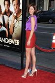 Kate Walsh at the Los Angeles Premiere of The Hangover. Graumans Chinese Theatre, Hollywood, CA. 06-02-09 — Stock Photo