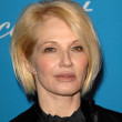 Ellen Barkin — Photo