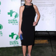 Julie Benz at Global Green USA&#039;s 6th Annual Pre-Oscar Party. Avalon Hollywood, Hollywood, CA. 02-19-09 - Stock Photo
