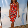 Stock Photo: Holly Robinson Peete at NBC Universal's Press Tour Cocktail Party, Langham Hotel, Pasadena, CA. 01-10-10