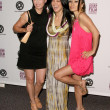 Julia Nickson with Kelly Hu and Bai Ling — Foto Stock