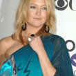 Stock Photo: Kate Hudson in press room at 35th Annual Choice Awards. Shrine Auditorium, Los Angeles, CA. 01-07-09