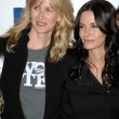 Постер, плакат: Laura Dern and Courteney Cox