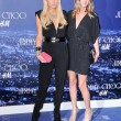 Paris Hilton and Nicky Hilton — Stock Photo #15206345
