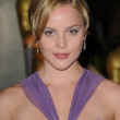 Abbie Cornish  at the 2009 Governors Awards presented by the Academy of Motion Picture Arts and Sciences, Grand Ballroom at Hollywood and Highland Center, Hollywood, CA. 11-14-09 - Stock Photo