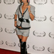 Bai Ling  at the Opening Night of Bel Air Film Festival, UCLA James Bridges Theatre, Los Angeles, CA. 11-13-09 - Stock Photo