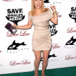 Hayden Panettiere  at a Benefit for The Whaleman Foundation, Beso, Hollywood, CA. 11-15-09 - Stock Photo