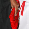 Stock Photo: Garcelle Beauvais's purse