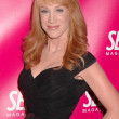 Kathy Griffin at the Self Magazine July 2009 L.A. Issue Party. Sunset Towers, West Hollywood, CA. 06-18-09 - Stock Photo