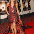 Bai Ling at the Los Angeles Premiere of &#039;A Beautiful Life&#039;. Arclight Hollywood, Hollywood, CA. 09-24-09 - Stock Photo