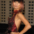 Bai Ling at the Los Angeles Premiere of 'A Beautiful Life'. Arclight Hollywood, Hollywood, CA. 09-24-09 — Stock Photo
