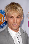 Aaron Carter at Fox Reality Channels Really Awards 2009. Music Box Theatre, Hollywood, CA. 10-13-09 — Stock Photo