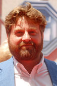 Zach galifianakis — Photo