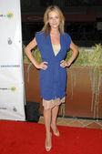 Jessalyn Gilsig at the Opening Night Of LA Shorts Fest '09. Laemmle's Sunset 5, West Hollywood, CA. 07-23-09 — Stockfoto